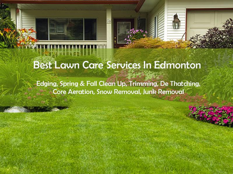 lawn maintenance edmonton.png